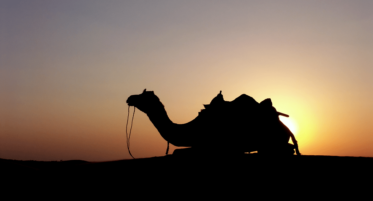 Research Spending Post-MiFID II: Is COVID-19 the Straw that Broke the Camel's Back?