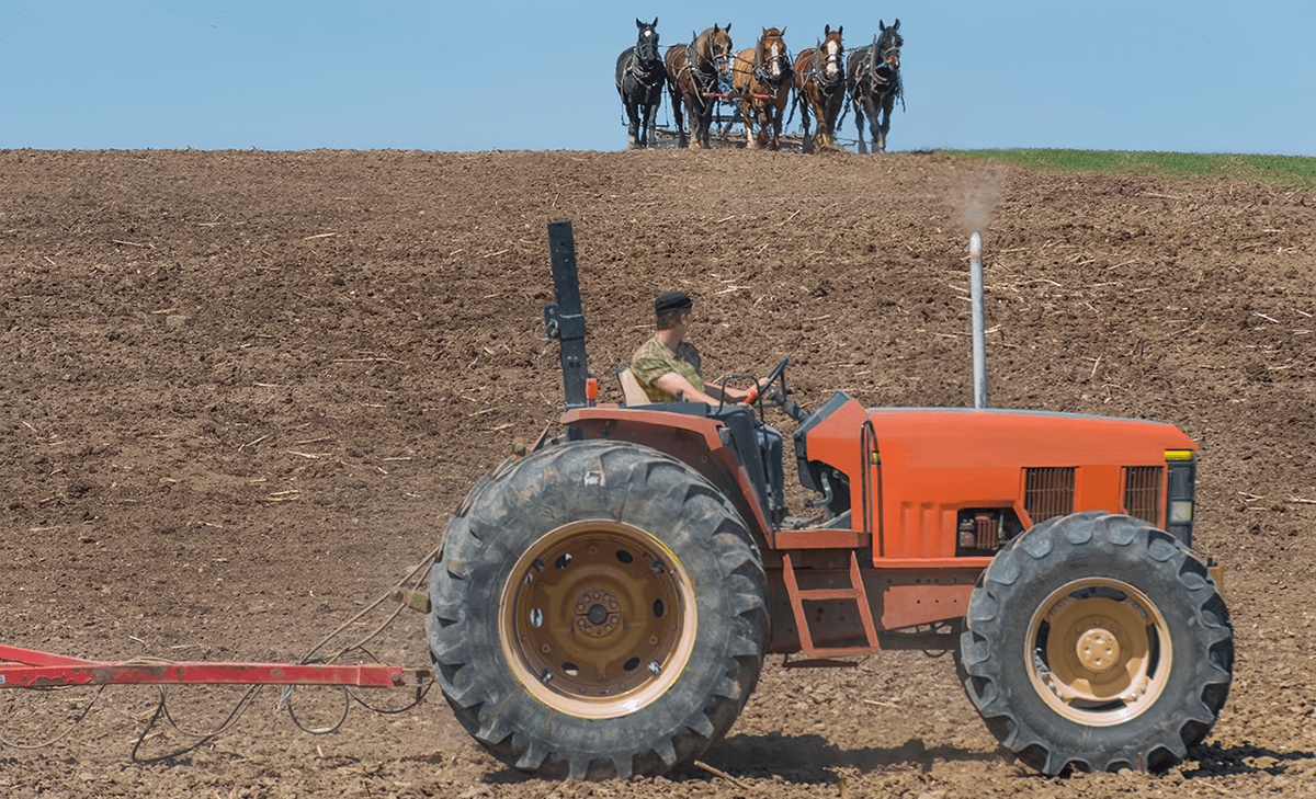 On Horses, Tractors, and Markets